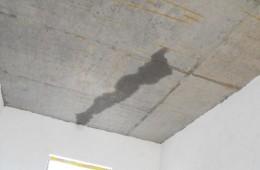 新房还没装修,房顶漏水到客厅,找补漏的公司。