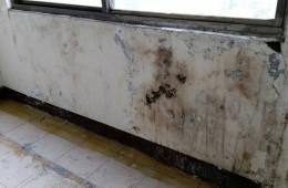 汉阳楚才小学,教学楼窗户周围渗水,墙壁已经发霉