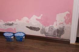 武汉市汉阳区龙阳幼儿园墙壁漏水 请防水公司上门维修