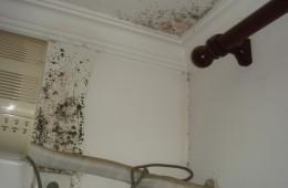 墙上修过一次还是霉了,有没有老师傅上门检查一下?