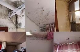 房屋发霉很严重,找历城专业防水师傅维修。