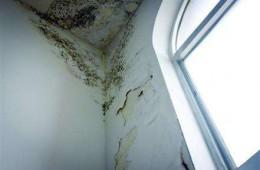 朝阳政和会商沙县小吃楼上墙体漏水