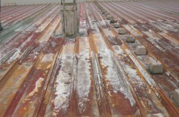 天赐园食品厂彩钢瓦厂房漏水