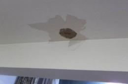 朝阳区政治学院公寓天花板漏水。