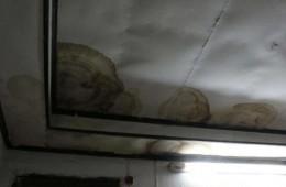 房山区北京民大公寓补漏