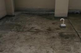 同济公寓房顶漏水,找师傅维修。