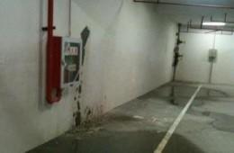 西青区杨柳青广场地下车库有数处漏水 请防水公司尽快联系。