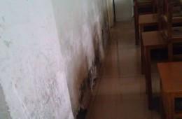 河西区湘江道小学教学楼房顶和男生厕所漏水。