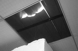 益海嘉里食品展厅屋顶维修