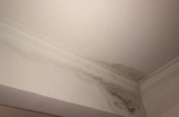 丰盈花园 卧室房顶漏水了,想维修一下,请师傅联系我!