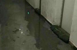 长沙南站地下室电梯口漏水