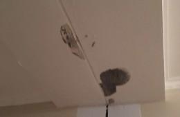 白云区富诚商务酒店 酒店走廊天花板漏水