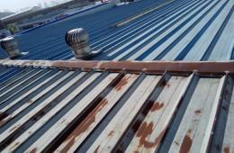 广州缔皇木纹装饰材料有限公司 彩钢屋顶补漏防锈外包