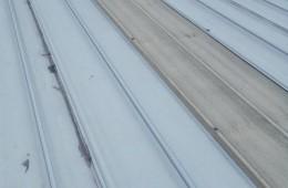 大沙后海塘工业园 厂房屋顶漏雨