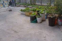 太平门五福苑 屋顶有点漏水找师傅做防水。