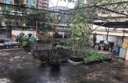 杭州市江干区水湘社区 楼顶露台往楼下客厅渗水