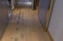 家里底板霉了一片找师傅上门检查是不是漏水,给上门费。