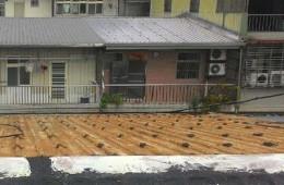 苏州市姑苏区寿宁弄 房顶彩钢板进水