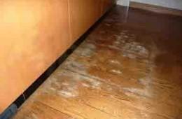 旅顺口新怡家园 地板发霉有水渍