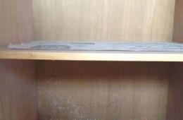 沙河口星海湾29号 壁柜发霉隔壁卫生间渗水