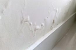 蓝翔家园西区17栋 厕所墙壁渗水到卧室