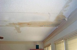 兰州市教育局办公楼天花板渗水