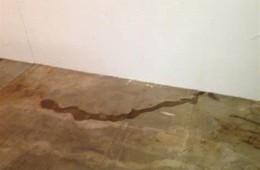 兰州市城关区鑫悦商务旅馆墙面渗水