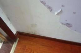 路北区凤凰新城110号楼卫生间墙面渗水