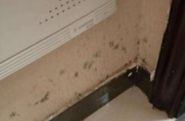 西湖区新华印刷厂住宅小区卫生间墙壁渗水