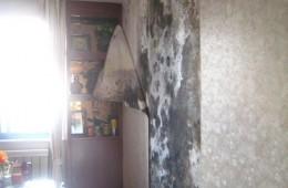 新市区科技园安置小区客厅墙壁渗水发霉