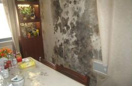 天山区测绘局家属院餐厅墙壁渗水