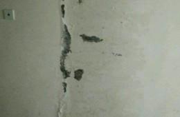延安路139号文化厅画院住宅楼走廊墙壁渗水
