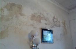 沙依巴克区恒业花园16栋卧室墙壁发霉渗水