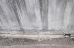 乌鲁木齐市第113中学科教楼屋顶水沟漏水