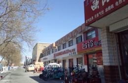 """灵武市综合执法局""""三纵四横""""街道楼体亮化工程采购"""