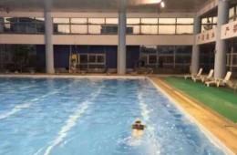大庆市萨尔图区奥林匹克游泳馆屋面防水维修工程