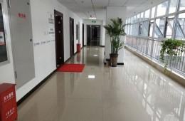 石家庄桥西区银保监局机关办公楼房顶防水修缮工程