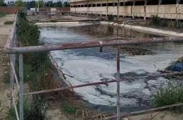 博罗县园洲镇生活垃圾填埋场封场治理工程