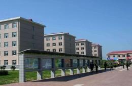 天津公安警官职业学院培训中心南侧屋顶防水施工外包