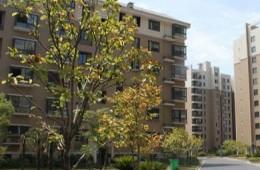 富阳区场口镇阳光家园阳光棚搭建及屋面防水工程