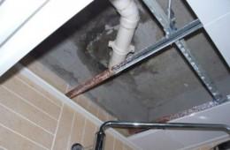 电子信息职业技术学院学生公寓卫生间、洗涮间渗漏维修外包