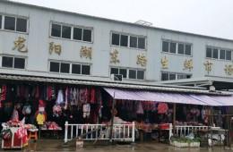 陶家岭龙阳湖东路生鲜市场铁皮房顶漏水修理