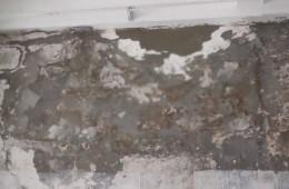 华能武汉阳逻经济开发区发电厂 主厂房几处屋面漏水修缮