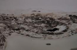 霸州市看守所行政办公楼屋顶老化漏水、全部监所屋顶进行防水处理